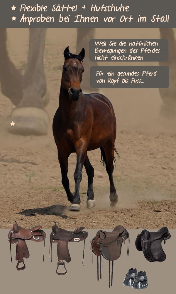 hufschuhe für pferde easyboot epic