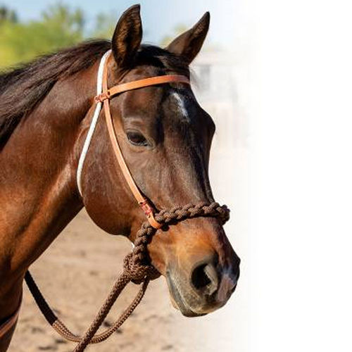 Professional´s Choice Hackamore